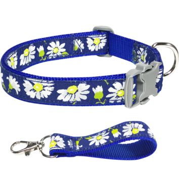 Spring Bloom Timeless Charming Daisy Royal Blue Dog Collar