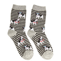 FOREVER 21 Boston Terrier Striped Socks Grey/Multi One