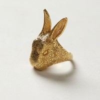 Hase Ring by Culoyon Gold