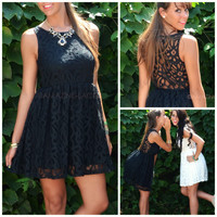 Amazing Lace Black Lace Sleeveless Dress