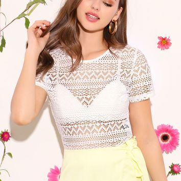 Sheer Guipure Lace Top Without Bra