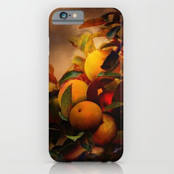 Apples In Fall - A Living Still Life iPhone & iPod Case by Theresa Campbell D'August Art