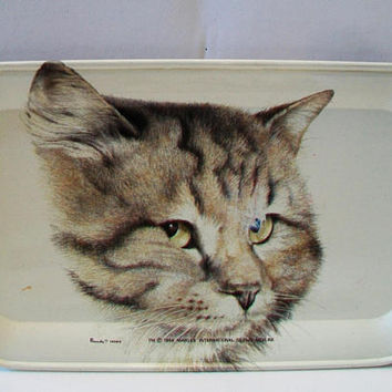 Vintage Tin Tabby Cat Tray Massilly France Kitten Retro 1984 Marlex International Home Decor