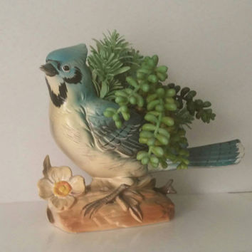Vintage Large Ceramic Blue Jay Planter Napcoware #573 Wild Bird Figurine FREE SHIPPING