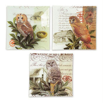 6 Owl Plates - French-country Inspired