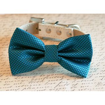 Royal Blue bow tie dog collar, Chic, Pet Wedding Accessories