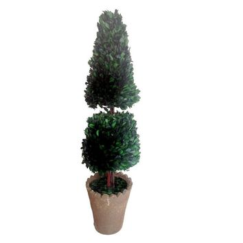 """30"""" Tall Preserved Natural Boxwood Topiary (8""""x 8""""x 29.5"""")"""