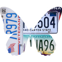 Arizona License Plate Butterfly