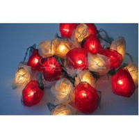 Red and White Roses Flowers String Lights
