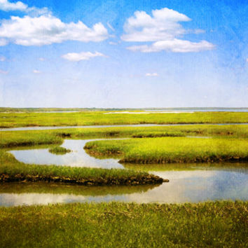 View From Bass Hole Boardwalk at Grays Beach Yarmouth Port MA Cape Cod - Fine Art Photo - Green Blue Summer