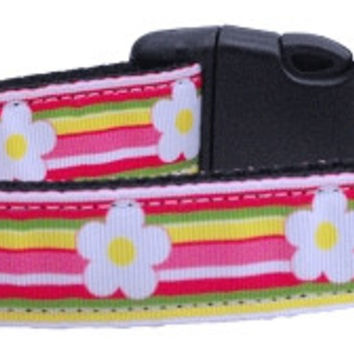 Striped Daisy Ribbon Dog Collars Large