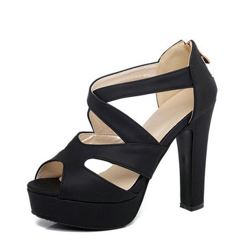 High Heel Platform Sandals Back Zipper up to Size 12 (26.5cm EU 43)
