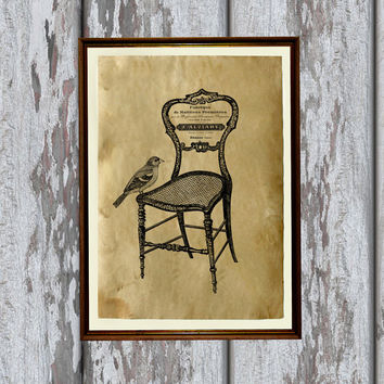 Bird on chair art print Old paper Antiqued decoration vintage looking 8.3 x 11.7 inches