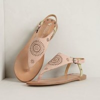 Farren Sandals by Koolaburra