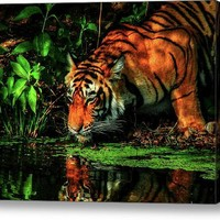 Paying Homage To The Jungle King Acrylic Print By Rohit Chawla