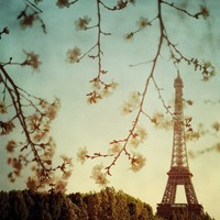 Le printemps Fine art Paris photograph by irenesuchocki on Etsy