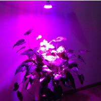 Plant Grow lights 10W Led lighting new 4Red + 1Blue E27 AC85-265V super light led Plant Growing Lamp aquarium long life use LH