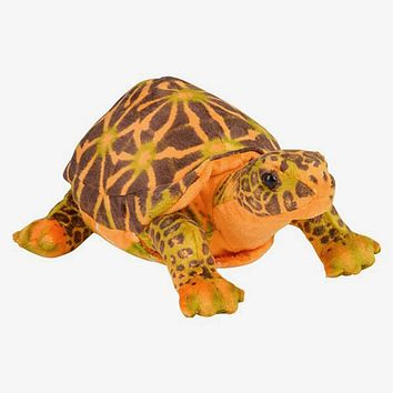 11 Inch Small Brown Box Turtle Stuffed Animal Plush Floppy Zoo Reptile & Amphibian Collection