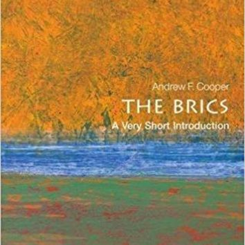 Brics Very Short Introductions
