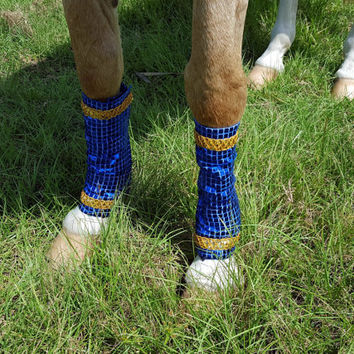 Glitter Horse Leg Wraps - Costumes for Horses - Red, Blue, Green, Aqua, Fuchia