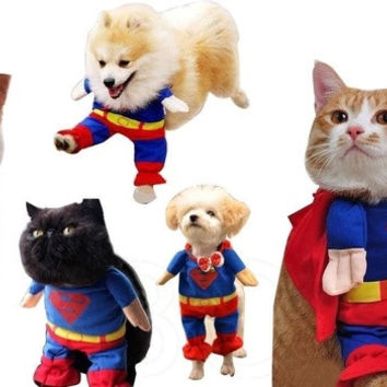 Puppy lovely Superman Pet Dog Clothes Halloween apparel Costumes Cute Jumpsuit = 1945855492