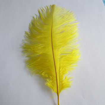 Ostrich Feather Decorative Centerpiece, 15-inch, Yellow