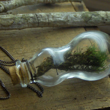 EVERGREEN. Bottle of Lichen Green Real Moss. Botanical natural eco friendly necklace
