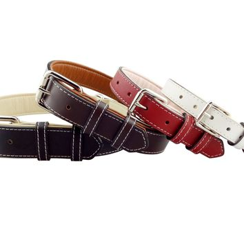 Amore Leather Dog Collar