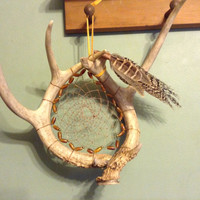 Deer Antler Dream Catcher Peacock and pheasant feathers buffalo horn beads