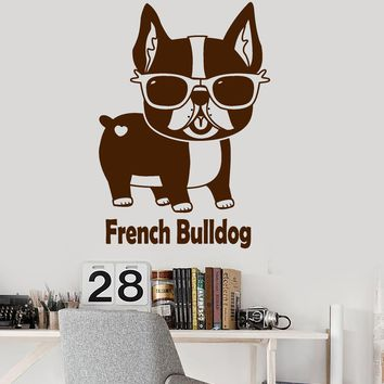 Vinyl Wall Decal French Bulldog Pet Shop Sunglasses Funny Animal Stickers (2558ig)