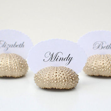 10 Champagne Gold Sea Urchin Shell Wedding Place Card Name Holders -Painted Beach Reception Table Chic Decor - Guest Escort Favor Card