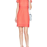 Embroidered Sheath Dress with Mesh Trim