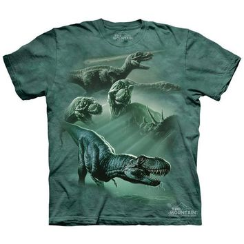 New DINOSAUR COLLAGE YOUTH CHILD  T SHIRT -