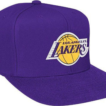 NBA Mitchell   Ness Los Angeles Lakers Hardwood Classics Basic Vintage Logo Snapback  Hat - Purple 7085208d6fd6