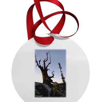 Colorado Mountain Scenery Circular Metal Ornament by TooLoud