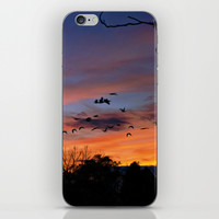 Evening iPhone & iPod Skin by Stephen Linhart