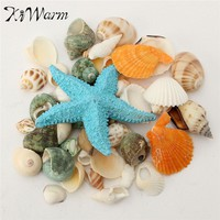 Mediterranean style DIY Vintage Fashion Beach Mixed SeaShells Mix Sea Natural Shells Shell Craft Aquarium Decoration