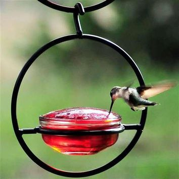 Hummingbird Feeder / Meal Worm Feeder Combination Bird Feeder