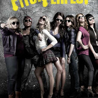 Pitch Perfect 11x17 Movie Poster (2012)