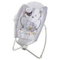 Fisher-Price Auto Rock 'n Play Sleeper