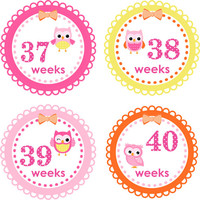 ON SALE Pregnancy Stickers Baby Bump Stickers Belly Stickers Pregnancy Announcement Weekly Pregnancy Stickers Photo Prop 24