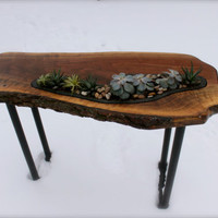 1 Living Live Edge Table