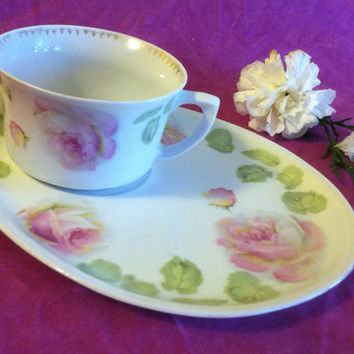 Rose Porcelain Teacup and Snack Plate Set German Fine China Pink Floral Tea Toast Scones Crumpets Hostess Luncheon Continental Breakfast Set