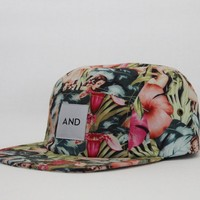 ANDCLOTHING — Hawaiian Pinup AND 5 Panel COMING 10/2/13