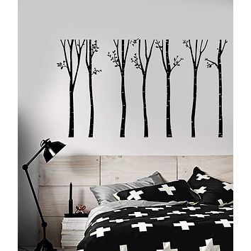 Vinyl Wall Decal Birch Trees Nature Forest Landscape Home Interior Stickers (2853ig)