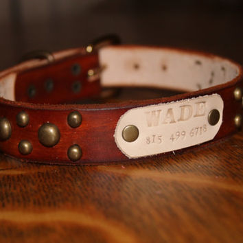 Custom/ Personalized/  Leather/ Antique Brass/ Dog/ Collar/ with Leather Name Plate
