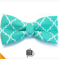 "Pet Bow Tie - ""Dolce Vita"" - Turquoise Mint Detachable Bowtie for Cats + Dogs"