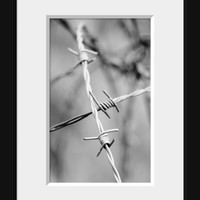 Barbed Wire Photo, Rustic Home Decor, Halloween Party Decoration, Southwestern Photography, Southern, Cowboy, Cowgirl, Farm, 16x24 Print