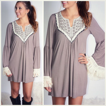 All The Bells & Whistles Mocha Embroidered Detail Dress