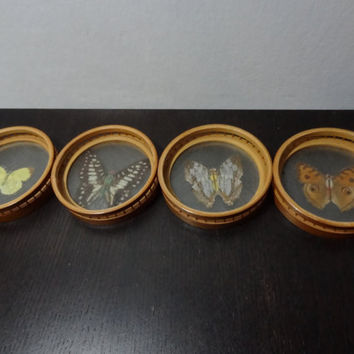 Vintage Bamboo Taxidermy Butterfly Coaster Set - Boho Style Bug Collector Coasters - Set of 4